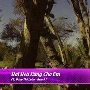 Hái Hoa Rừng Cho Em – Đặng Thế Luân – Asia 81.mkv_snapshot_00.03