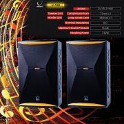 Maingo-Speaker—V150b