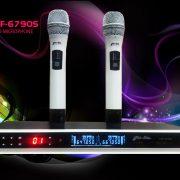 Gia-Hân-Micro-6790SW